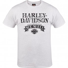 Harley-Davidson Military - Men's Ash Short-Sleeve Graphic T-Shirt - Aviano Air Base | Numeral Name